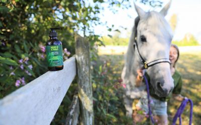 Horse Formula Benefits: for anxiety, arthritis, laminitis & more!